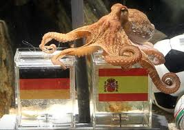 Paul- The Octopus