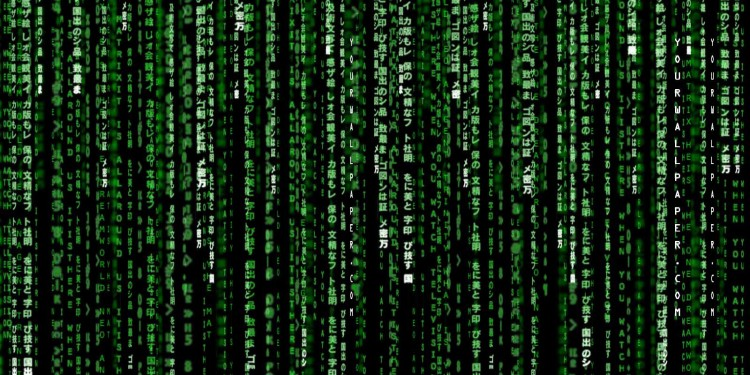 The Matrix: Movie series and beyond