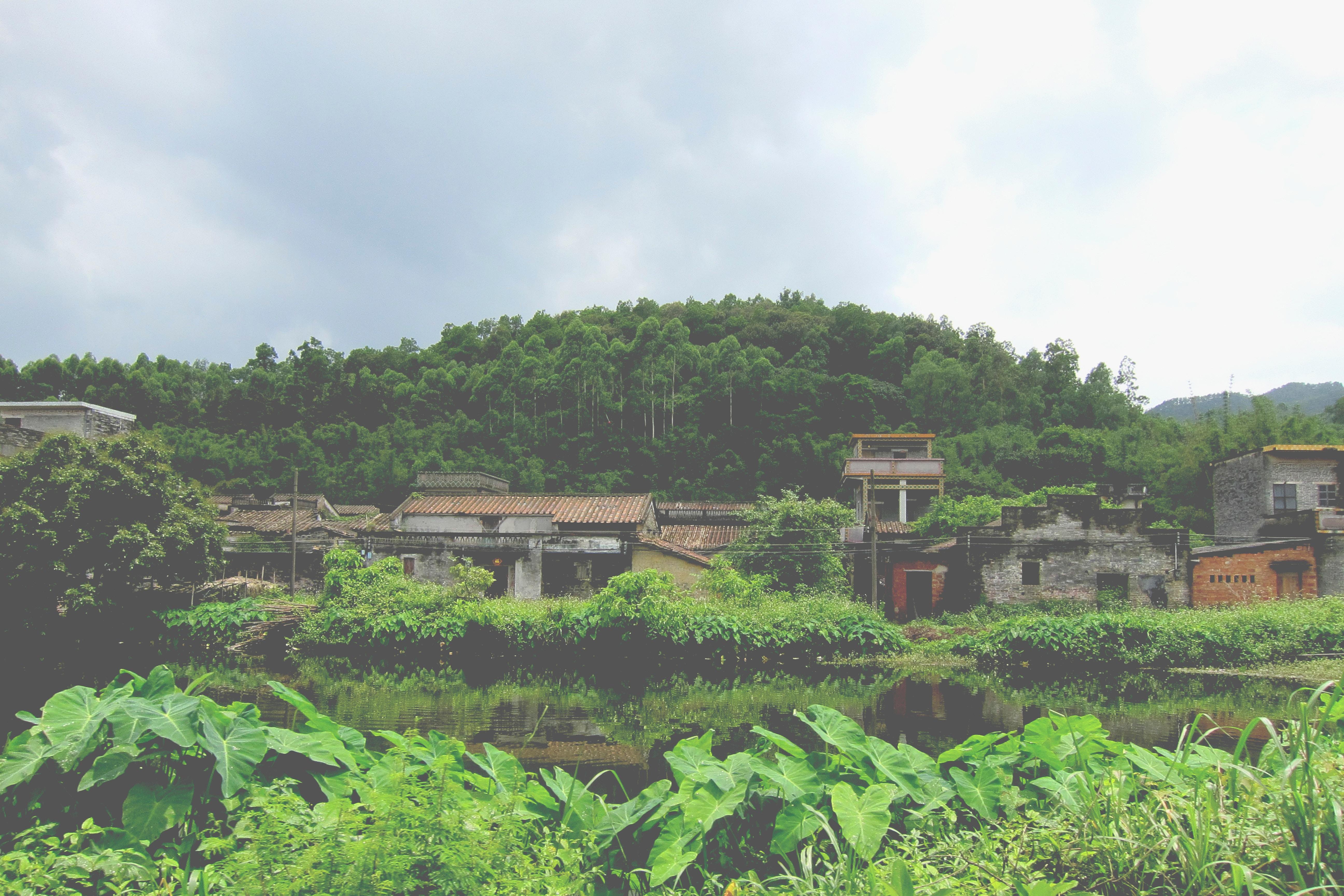 Dagam Village | Youthopia